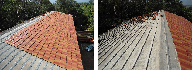 pionnier_roof-2